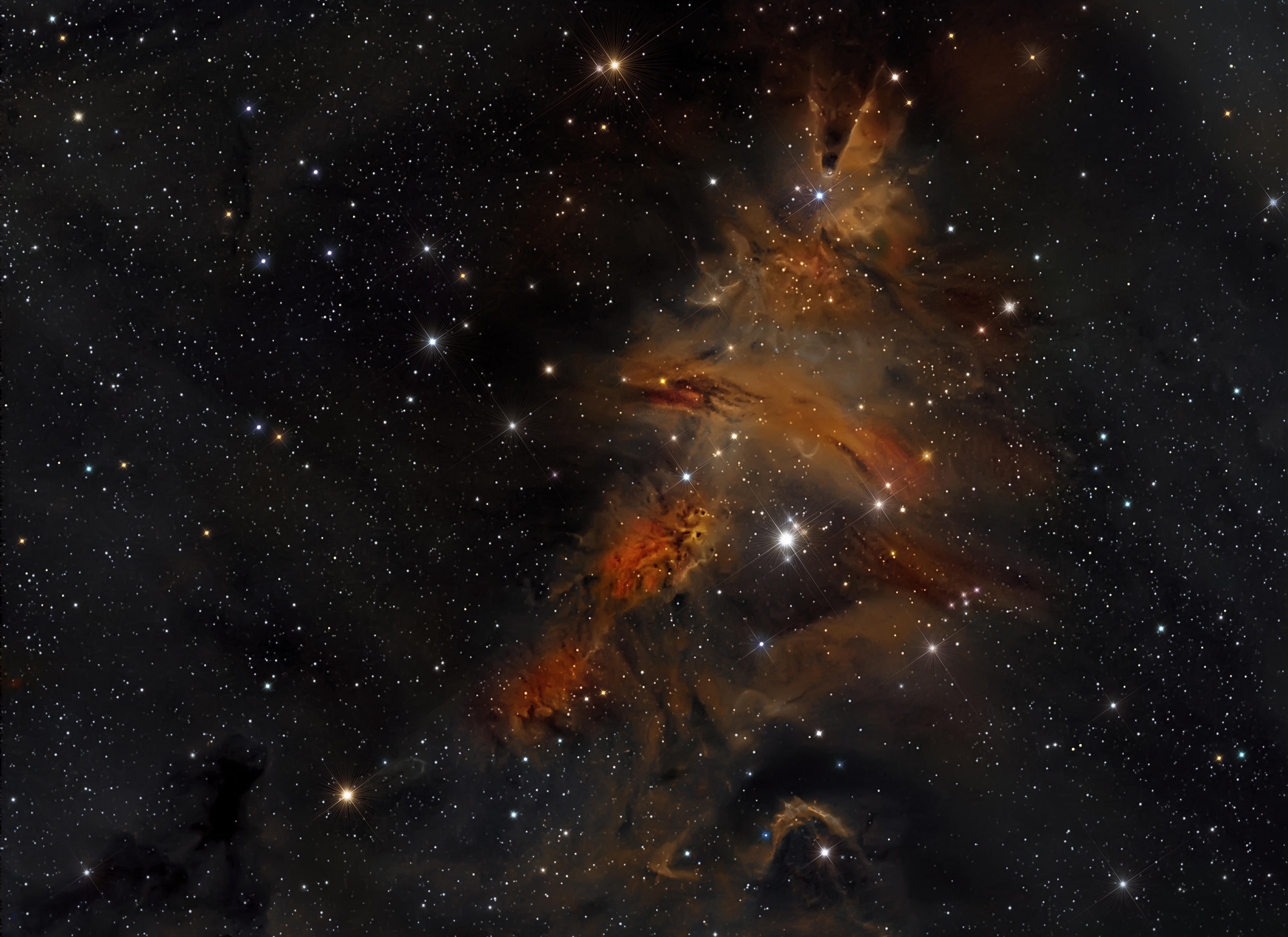 Cone nebula, Christmas Tree cluster